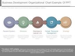 Business Development Organizational Chart Example Of Ppt