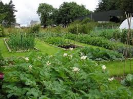 Crop Rotation Chart Vegetable Gardening Using Crop Rotation In Home Vegetable Gardens Snohomish