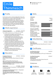 Resume Examples By Real People It Security Specialist