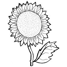 Small Picture Sunflower Coloring Pages With Colored Picture Example