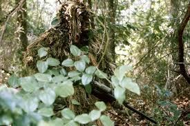 Military <b>camouflage</b> - Wikipedia