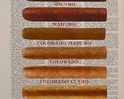 Cigar Chart Poster Cigar Size Chart Dictionary Art Print Shape Smoke Cigars