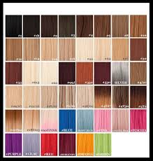 Wig Color Chart Codes Remy Hair Extensions Colour Chart