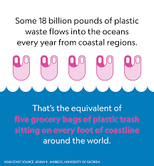 Hasil gambar untuk Fast Facts About Plastic Pollution