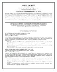 Perfect Resume Summary Good My Perfect Resume Professional Summary Enchanting My Perfect Resume Cost