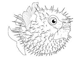 Underwater Sea Creatures Coloring Pages Sea Creature Coloring Page