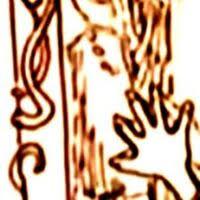 Euphemia Potter | Harry Potter Wiki | Fandom