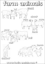 Coloriage Sur Les Animaux De La Ferme En Anglais Farm Animals