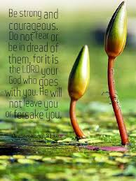 Bible Quote Of The Day Beauteous Bible Quotes For The Day 4848 APK Download Android Books