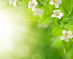 Free download Floral background 31174 ...