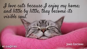 TOP 40 CAT QUOTES Of 40 AZ Quotes Unique Cat Quotes