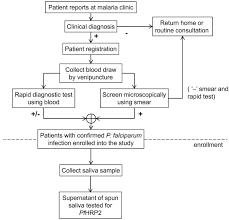 Parasitic Draw Chart Enrollment Of Patients Flow Chart Showing The Process For