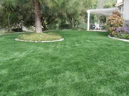 artificial grass las vegas. Fake Grass Las Vegas Artificial