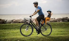 <b>Детское велосипедное кресло</b> Thule RideAlong Lite, оранжевый ...