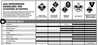 Whats That Age Again A Complete Guide To When Scouts Can