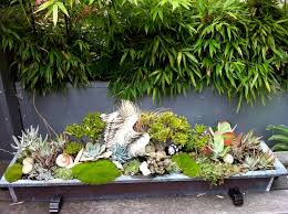 Small Picture Brilliant Garden Design Tropical Antonia Schofield And Ideas