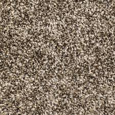 Carpet Luxury Lowes Stainmaster Carpet For Home Stainmaster