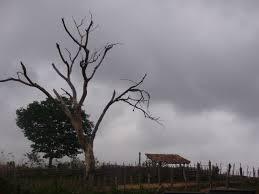 Image result for chuvas em umarizal
