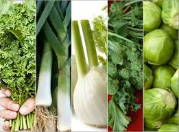 Image result for eat green