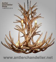top 55 exceptional crl antler chandeliers large chandelier reion mule deer lamp baccarat contemporary real lamps
