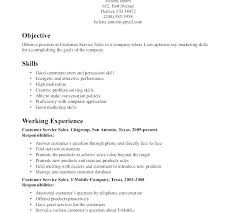 Computer Technician Skills List Resume Sample Of Chemistry Lab