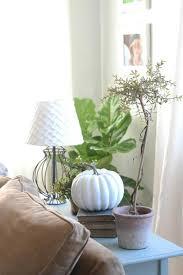 Rustic Living Room Ideas Impressive Inspiration
