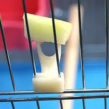 Sale <b>2 pcs Pet Parrot</b> Fruit fork birds set on the cage convenient ...