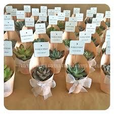 Mini sukulent, mini succulent, kakts, cactus, wedding favors, nikah ekeri,
