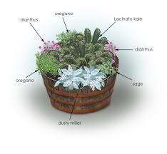 3 Ideas To Start Herb Garden With Potted MethodContainer Herb Garden Plans