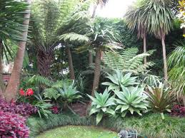 tropical outdoor lighting. Large Size Of Garden Kitchen Design Tropical Landscape Plans Lighting Outdoor M