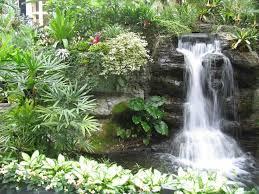 Small Picture 10344 best Gardening images on Pinterest Garden ideas