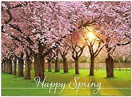 Spring Photo Cards Amazon Com 25 Happy Spring Cards Flowering Trees Design