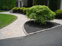 sidewalk ideas | beautifully landscaped formal entrance mulched bed with  landscape .