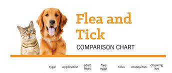 Flea Tick Prevention Comparison Chart Comparison Chart Flea Tick Products