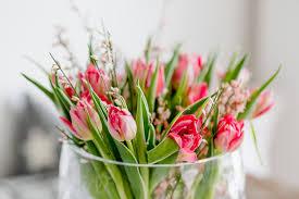 Die Besten Pflanzen Fürs Schlafzimmer Oder Tulpenglück Pomponetti