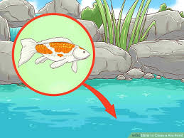 how to clean a koi pond. Delighful Koi Image Titled Clean A Koi Pond Step 15 For How To A L