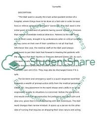 Reflective Essay Writing Examples Reflective Writing On Health Promotion During Nursing