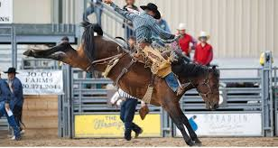 Douglas County Fair And Rodeo 2019 Cowboy Lifestyle Network