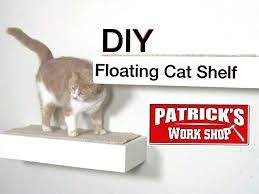 beautiful shelving ideas cat shelves on wall floating shelf diy corner contemporary for cats decoration ating cat shelf