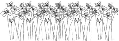 tumblr transparents black and white flowers. Delighful Tumblr Transparentblackandwhiteflowerspng And Tumblr Transparents Black White Flowers R