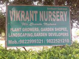 Top 50 Tree Plantation Services In Pune City Pune Best Tree