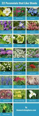 Small Picture 24 best My shade garden images on Pinterest Shade plants Plants