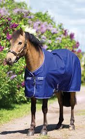 pony blankets