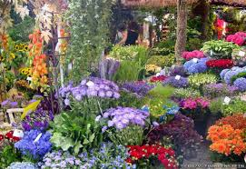 Full Size of Flowers:cool 21 Home Garden With Flowers On Combining Plants  For A ...