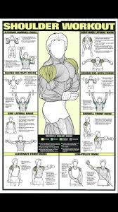 Shoulder Chart Workout Shoulder Training Sportmachinesgym Workout Clarky At Gym