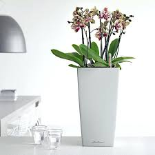 modern office plants. Large Indoor Pots Office Planters Modern Unlimited Inside Decorations 0 Ceramic For Plants