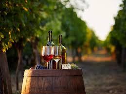 Resultado de imagem para wines