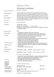 Marketing Coordinator Job Description Extraordinary Marketing Director Resume Examples Advertising Executive Job