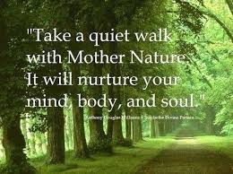 Best Nature Quotes Custom Best Nature Quotes Wonderful Take A Quiet Walk With Mother Nature It