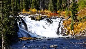 lewis falls in autumn